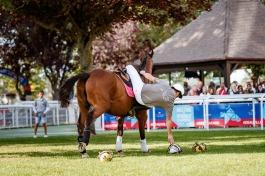Horse-Ball - Haras de Boscherville - @Zuzanna Lupa Photography