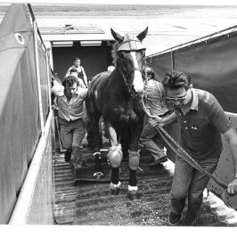 sirlad sulla rampa dell'aereo per uk 1977