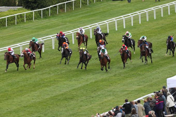 Il ventaglio di cavallo a 200 metri dal traguardo del Derby Laccario in corda, al suo esterno Django Freeman cerca l'assalto