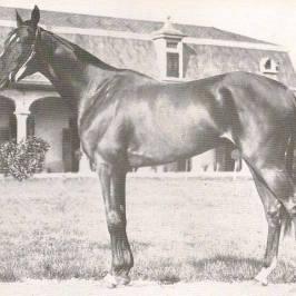 Ortello Paolo Caprioli 1929